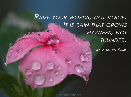 Raise your words, not voice. It is rain that grows flowers, not thunder - Jalaluddin Rumi