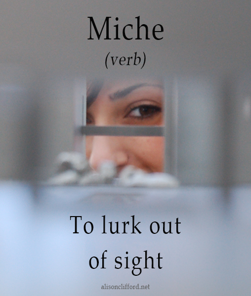 MIche - to lurk out of sight