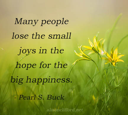 Many people lose the small joys in the hope for the big happiness - Pearl S. Buck